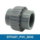 EFFAST_PVC_BOG